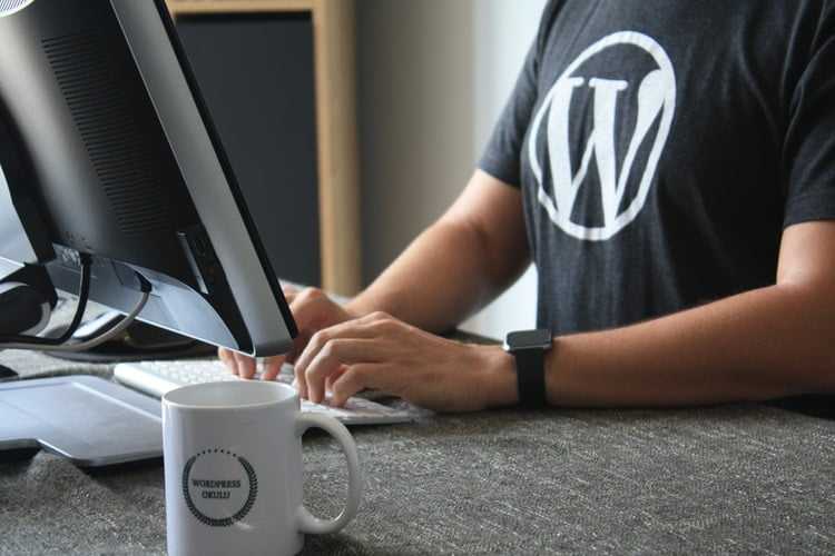 mentenanta wordpress singur vs mentenanta wordpress cu specialist